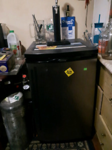 Beer fridge with tap and 10lb CO2 Tank full