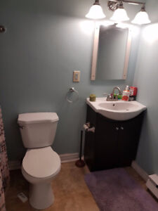 city center/large 2 bedroom /washer and dryer/pet friendly/yard