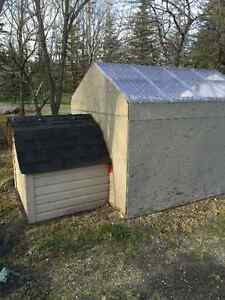 Specialty Dog House