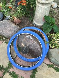 Blue 26 inch bicycle tires one with the rim
