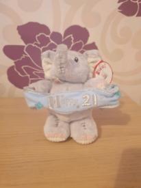Happy 21st Birthday Elliott Bear