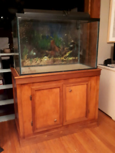 50 Gallon Aquarium with Hood & Stand