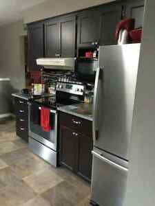 Kitchen Cabinets, Sink & Granite Counters $2500 or Best Offer
