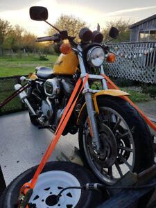 1200s sportster for sale