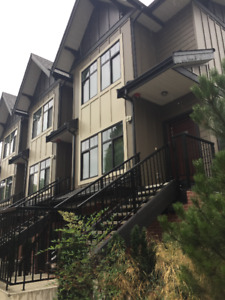 BRAND NEW 2BRD/2.5BATH TOWNHOUSE FOR RENT ($3,000/ MONTH)