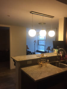 Beautiful Downtown Apartment Available February 1st or March 1st