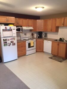 Very Nice Basement Suite for Rent