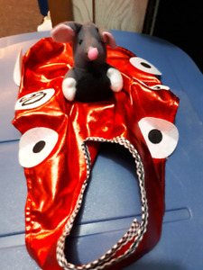 Race car costume for  small dog/large cat
