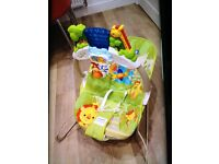 Fisher price rainforest bouncer (good condition) smoke and pet free home