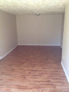 2bedroom lower Sackville $800/mth