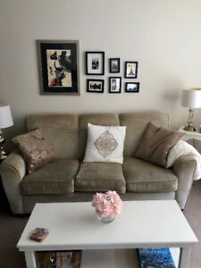 Beautiful and comfortable couch and chair set