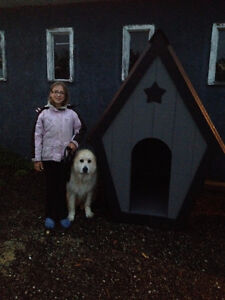 Brand New Insulated Very Large Dog House Strathcona County Edmonton Area image 6
