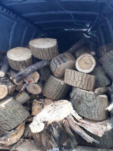 Firewood for sale half a pick up truck, 50 bucks. come pic it up
