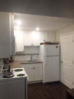 Small dog friendly 2 Bed,1 bath Bi-level legal suite. Armstrong