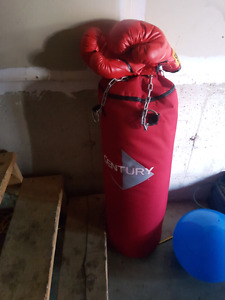 PUNCHING BAG W/ GLOVES