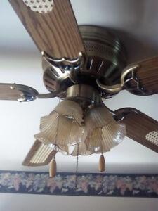 Fan dining room light