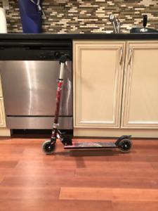 Kick Scooter (Beaches Area)
