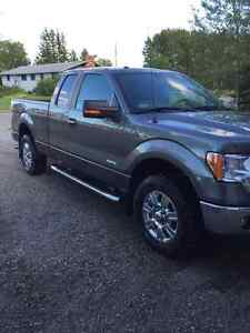 2011 Ford F-150 Pickup Truck (safetied!)