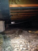 Windsor Crawl Space Waterproofing