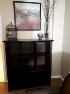 Cabinet wall unit with storage