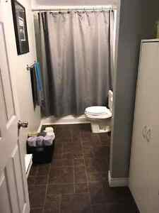 2 bedroom basement apartment separate driveway St. John's Newfoundland image 6