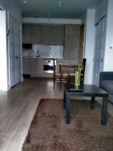 GRIFFINTOWN – Luxury condo 3 ½ for rent (1495$/month)