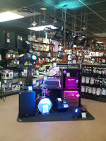 Great Deals on Gibson,Traynor and more at Long-Mcquade !