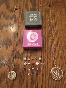 Origami Owl + South Hill Designs