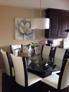 BREATHTAKING! 2 BD RM APARTMENT FOR THE PROFESSIONAL