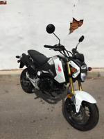 Great Condition Honda Grom  ***NOW SOLD*** City of Toronto Toronto (GTA) Preview