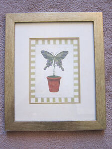 Framed butterfly picture