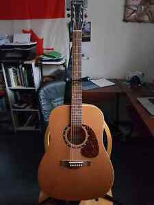 Norman b-18 acoustic guitar mint