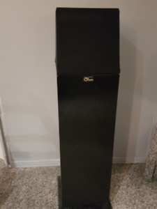 Ohm Walsh Speakers -  2 Large Front, Large Center and 4 Surround