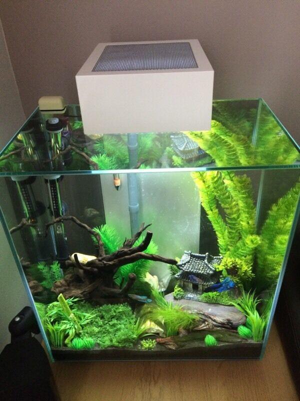 fluval edge 46l fish tank in walsall west midlands gumtree. Black Bedroom Furniture Sets. Home Design Ideas