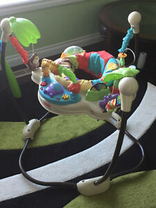 Fisher-Price Luv U Zoo Jumperoo in Excellent Shape