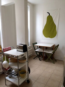 BEAUTIFUL downtown apartment available JULY
