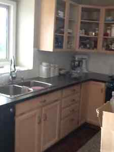 """Kitchen countertops..including 52""""x54 isLand"""