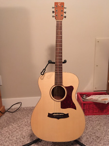 Tanglewood TW70 Guitar + Stand and Carrying Bag