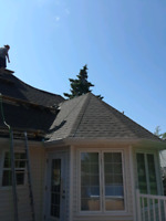 Need roofing work done?