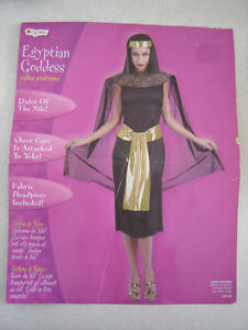 Egyptian Goddess Costume - size 12-14 (fits smaller)