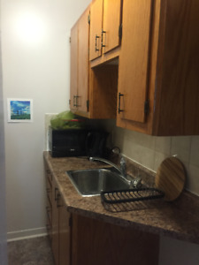 Quiet One Bedroom in South End Halifax