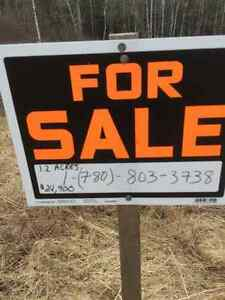 Building Lot For Sale on PLUMWESEEP RD