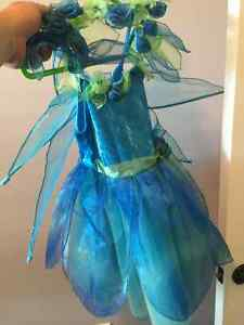 Fairy or Tinkerbell Halloween costume  Asking $15  Used once, si