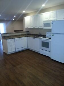 Ridgetown - 2 Bedroom Apartment For Rent Available Immediately!