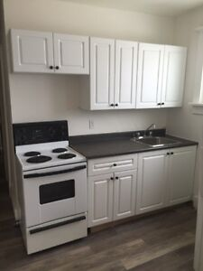 Renovated 1 Bdrm Apartment 201-203 Balsam St. S.