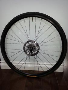 Bike tire with wheel (Saddleridge, N.E. Calgary)