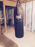 EverLast Heavy Weight Punching Bag and Gloves