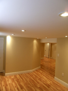 1 large bedroom plus smaller room basement apartment for rent