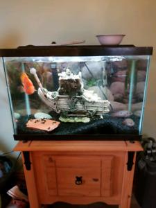 Aquarium 30 gallons tout equiper