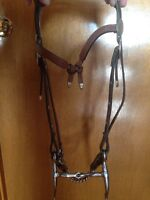 Headstall for sale!